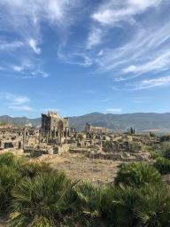 Volubilis Roman ruins, near Moulay Idriss