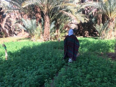My host mom in the jnan/igran (garden)